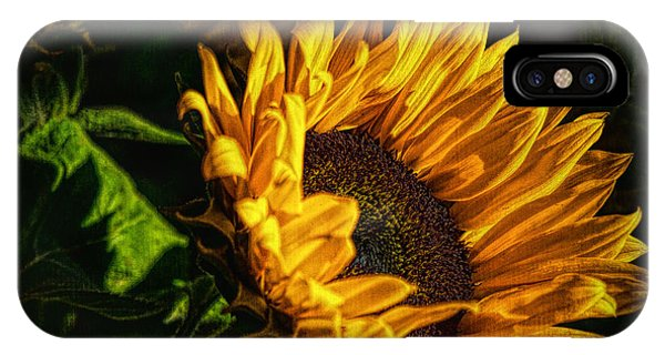 IPhone Case featuring the photograph Warmth Of The Sunflower by Michael Hope