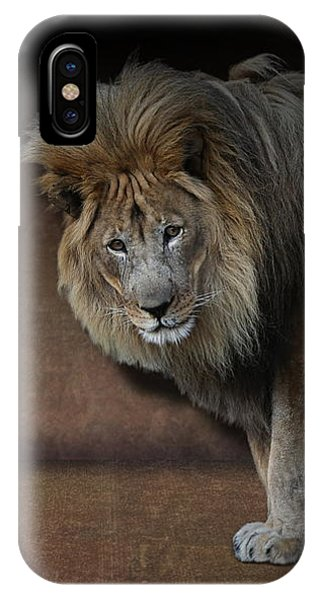 IPhone Case featuring the photograph Was That My Cue? - Lion On Stage by Debi Dalio