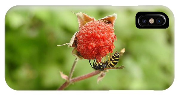 Wasp And Berry IPhone Case