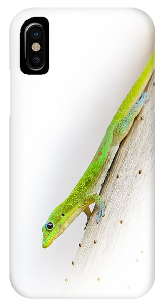 Watch Out Ants...here I Come IPhone Case