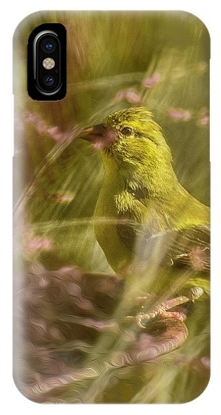 Watch What You Eat.... IPhone Case