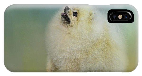 Pomeranian iPhone Case - Watching For Rain Drops by Jai Johnson