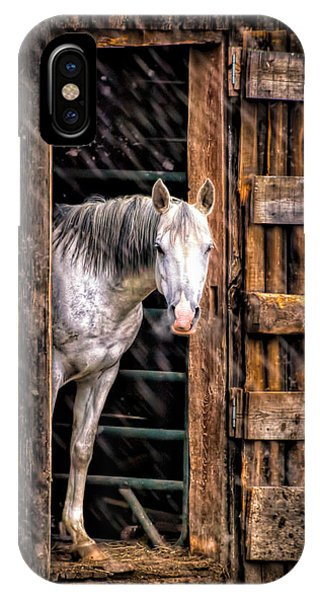 White Horse iPhone Case - Watching The Snow Fall by Bob Orsillo