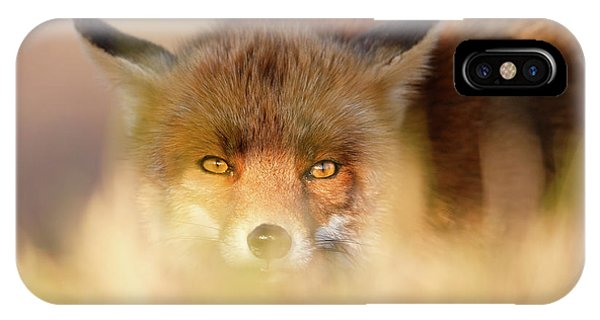 Watching The Watcher - Hunting Red Fox IPhone Case