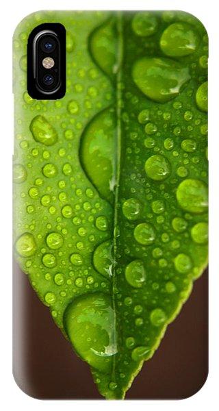 Water Droplets On Lemon Leaf IPhone Case