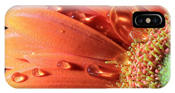 Water Drops On Colorful Flower Petals IPhone Case