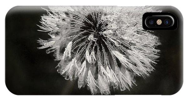 Soft iPhone Case - Water Drops On Dandelion Flower by Scott Norris