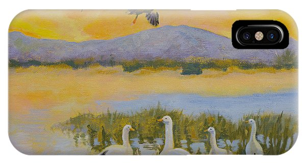 Water Fowl, Sutter Buttes IPhone Case