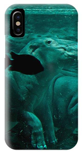 Water Horse Ballet IPhone Case