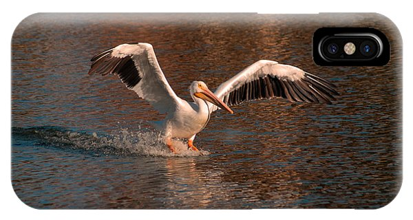 Water Landing IPhone Case