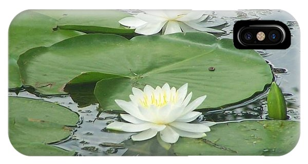 Water Lilies At Conesus Lake IPhone Case