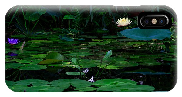 Water Lilies In The Pond IPhone Case