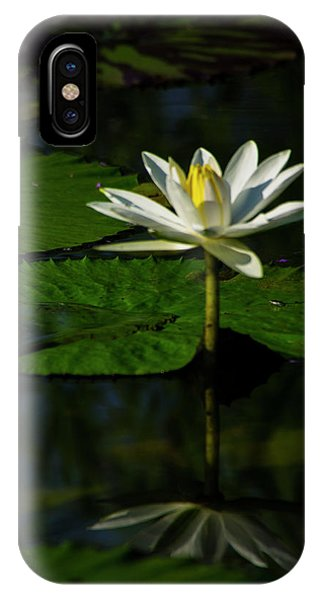 IPhone Case featuring the photograph Water Lily 1 by Buddy Scott