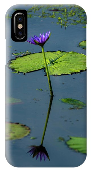 IPhone Case featuring the photograph Water Lily 2 by Buddy Scott
