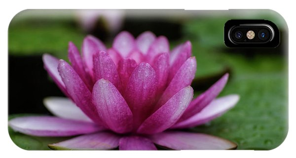 Water Lily After Rain IPhone Case