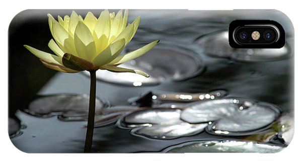 Water Lily And Silver Leaves IPhone Case