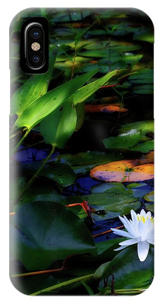 Lillie iPhone Case - Water Lily by Bill Wakeley