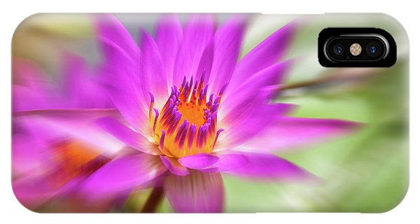 Pistil iPhone Case - Water Lily by Delphimages Photo Creations