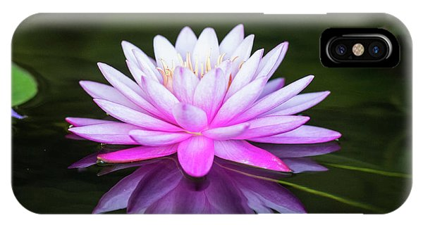 Water Lily IPhone Case
