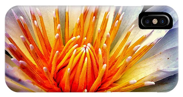 Water Lily Flower IPhone Case