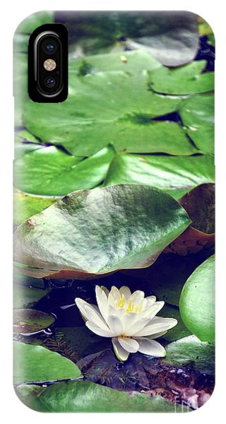 Water Lily II Phone Case by HD Connelly