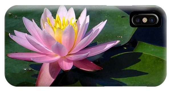 Water Lily In Mountain Lake IPhone Case