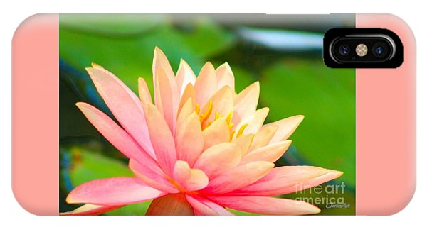 Floating Water Lily  IPhone Case