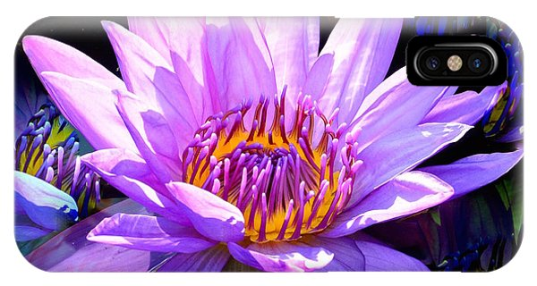 Water Lily In Purple IPhone Case