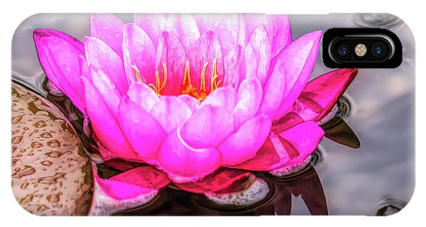 Water Lily In The Rain IPhone Case
