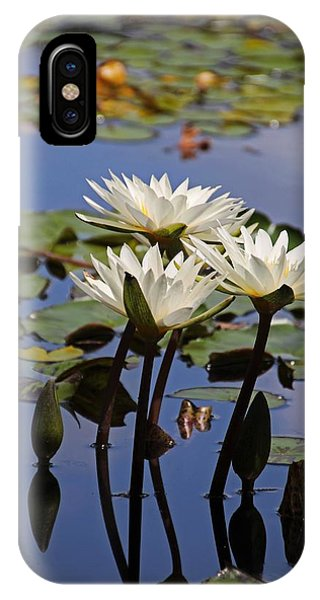 Water Lily Reflections IPhone Case