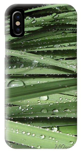 Water On Siberian Iris IPhone Case