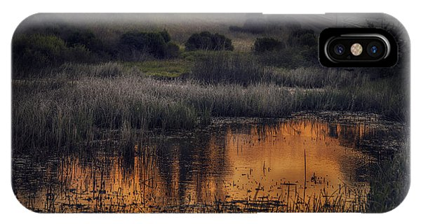 Waterbird Preserve Sunrise IPhone Case