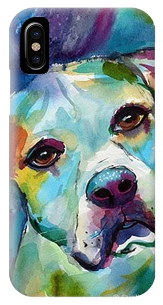 Colorful iPhone Case - Watercolor American Bulldog Painting By by Svetlana Novikova