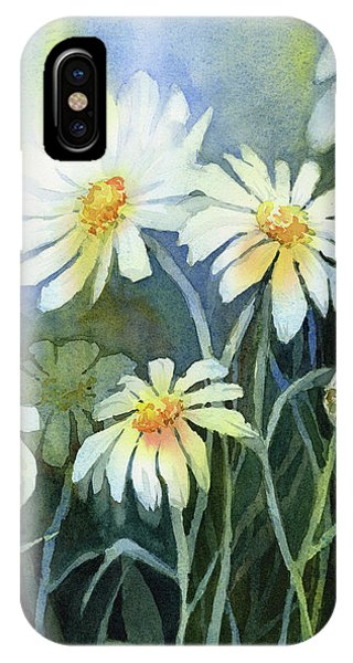 Daisy iPhone X / XS Case - Daisies Flowers  by Olga Shvartsur