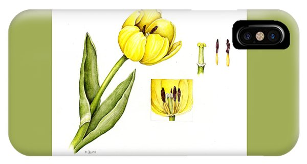 Watercolor Flower Yellow Tulip IPhone Case