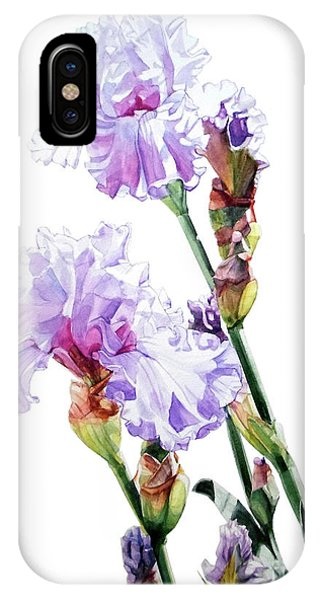 Watercolor Of A Tall Bearded Iris I Call Lilac Iris Wendi IPhone Case