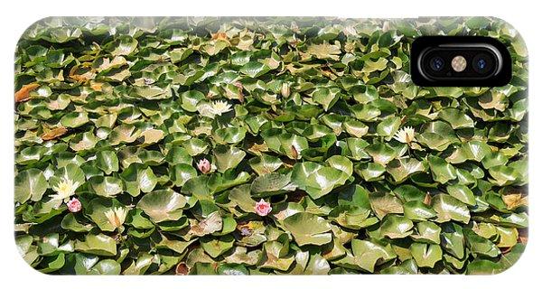 Grenn iPhone Case - Waterlilies by Davide Guidolin