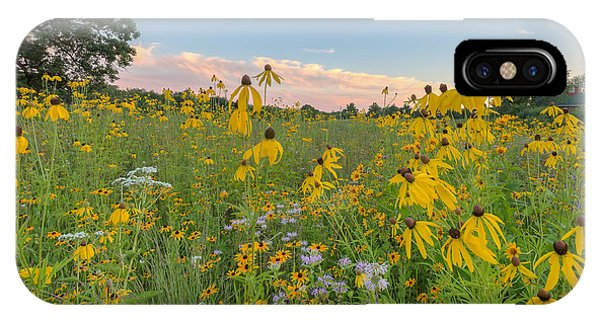 IPhone Case featuring the photograph  Prairie 1 by Paul Schultz