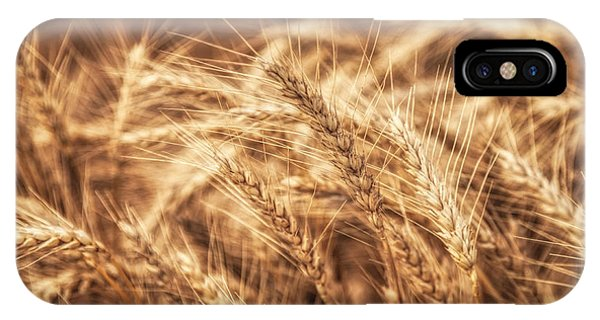 Waves Of Wheat IPhone Case