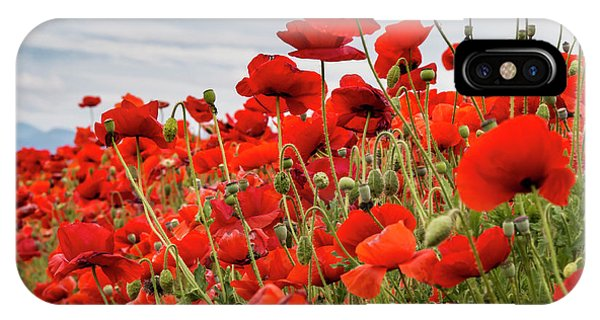 Waving Red Poppies IPhone Case
