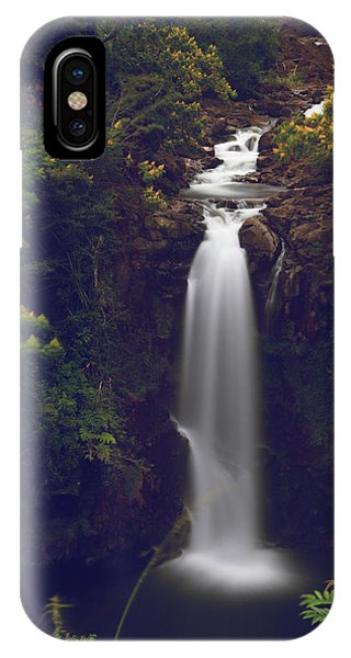 Fall Flowers iPhone Case - We Almost Had It All by Laurie Search