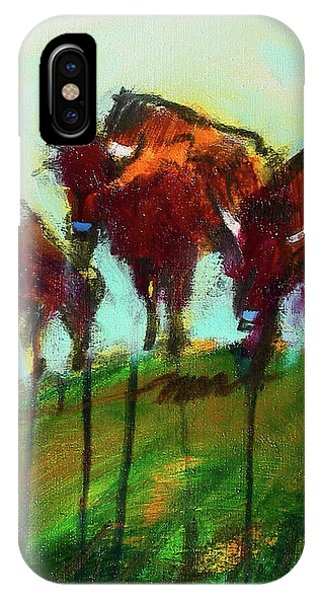 We Three Buffalo IPhone Case