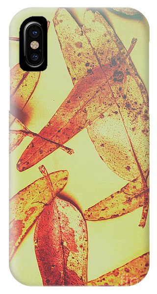 Botany iPhone Case - Weathered Autumn Leaves by Jorgo Photography - Wall Art Gallery