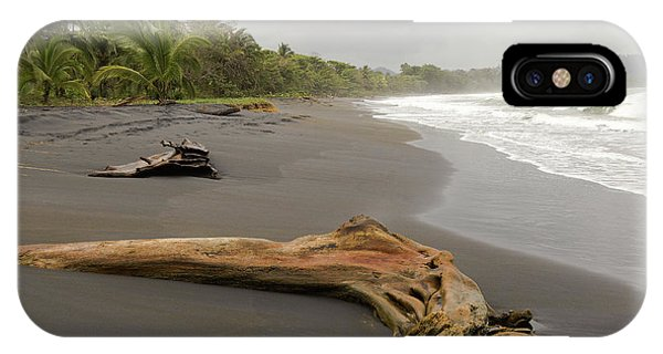 Weathered Tree On Costa Rica Beach IPhone Case