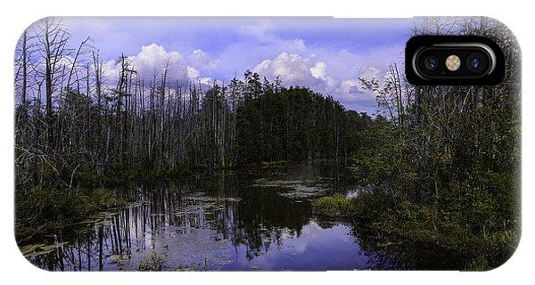 Webb Cedar Swamp Blog IPhone Case