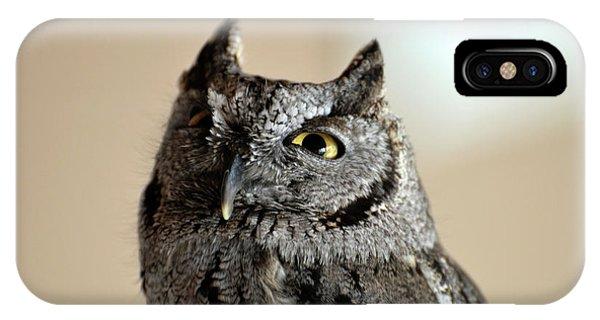 Wee Western Screech Owl IPhone Case