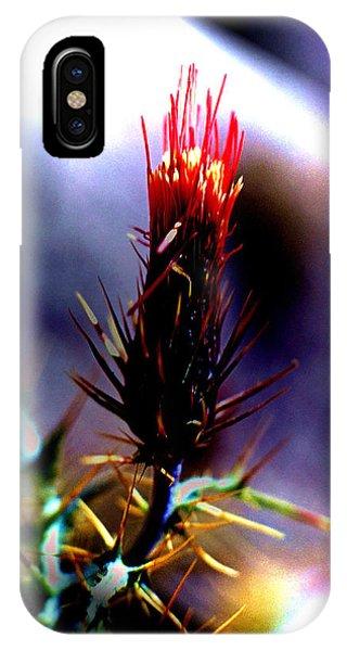 Arizona Thistle IPhone Case