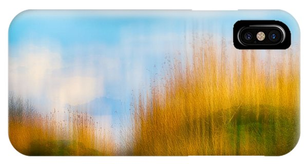 Weeds Under A Soft Blue Sky IPhone Case