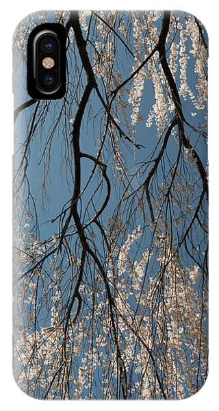 Weeping Cherry #2 IPhone Case