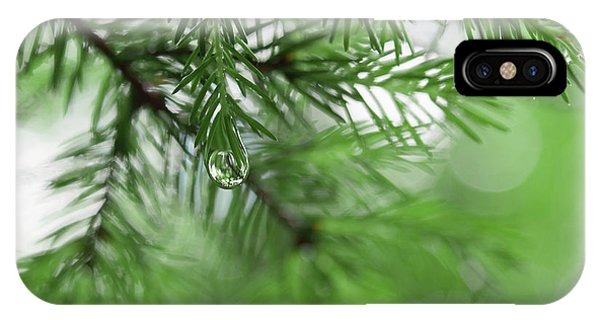 Weeping Pine 2 IPhone Case
